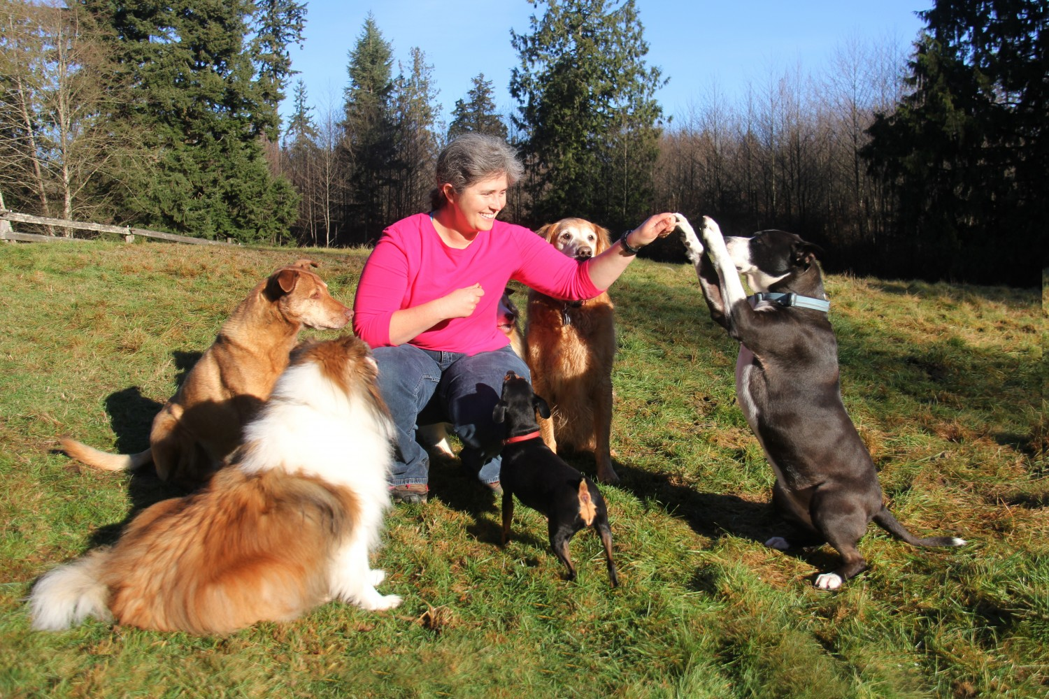 Dr. Robinett with Bella, Conner, Jessie, Roo, and Jasmine